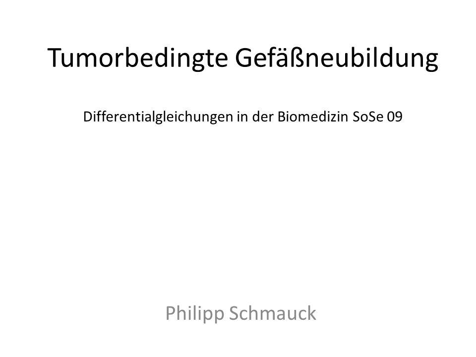 Tumorbedingte Gefäßneubildung Philipp Schmauck Differentialgleichungen in der Biomedizin SoSe 09
