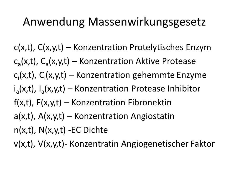 Anwendung Massenwirkungsgesetz c(x,t), C(x,y,t) – Konzentration Protelytisches Enzym c a (x,t), C a (x,y,t) – Konzentration Aktive Protease c i (x,t), C i (x,y,t) – Konzentration gehemmte Enzyme i a (x,t), I a (x,y,t) – Konzentration Protease Inhibitor f(x,t), F(x,y,t) – Konzentration Fibronektin a(x,t), A(x,y,t) – Konzentration Angiostatin n(x,t), N(x,y,t) -EC Dichte v(x,t), V(x,y,t)- Konzentratin Angiogenetischer Faktor