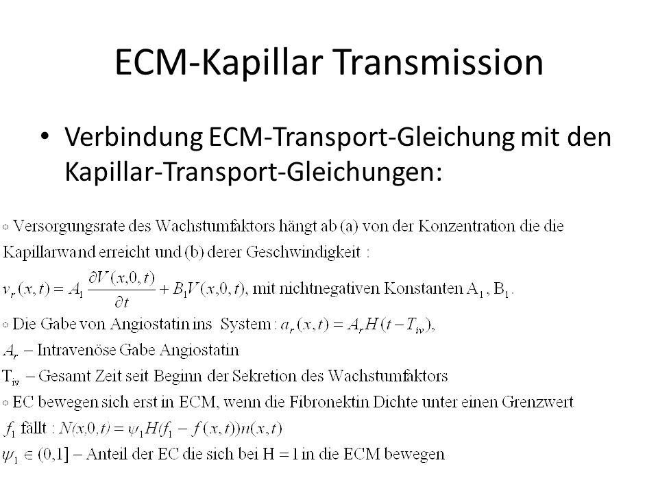 ECM-Kapillar Transmission Verbindung ECM-Transport-Gleichung mit den Kapillar-Transport-Gleichungen: