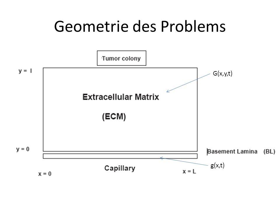 Geometrie des Problems G(x,y,t) g(x,t)