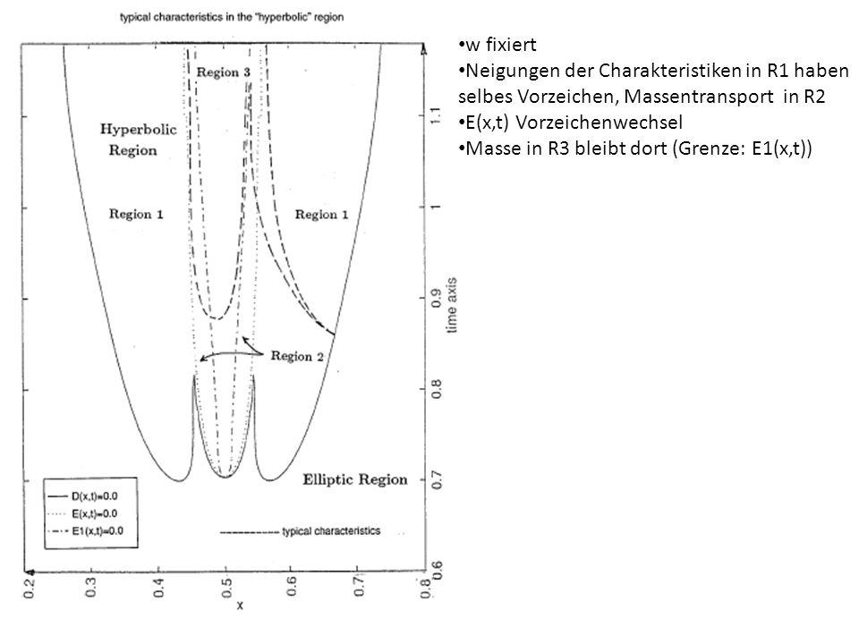 w fixiert Neigungen der Charakteristiken in R1 haben selbes Vorzeichen, Massentransport in R2 E(x,t) Vorzeichenwechsel Masse in R3 bleibt dort (Grenze: E1(x,t))