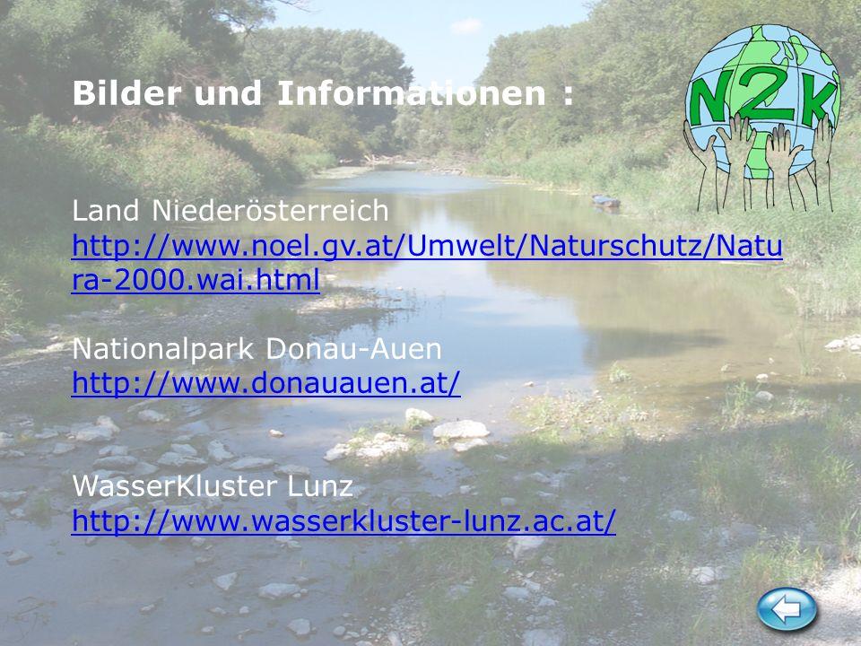 Bilder und Informationen : Land Niederösterreich http://www.noel.gv.at/Umwelt/Naturschutz/Natu ra-2000.wai.html Nationalpark Donau-Auen http://www.don