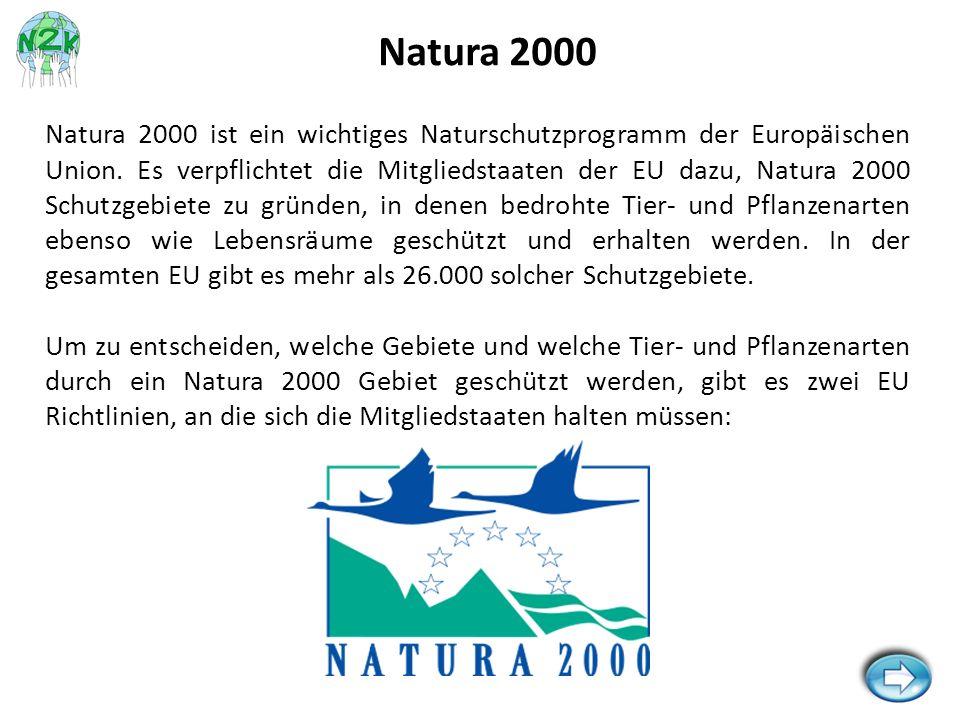 Fauna-Flora-Habitat-Richtlinie (FFH-Richtlinie): Es werden Fauna (Tierwelt), Flora (Pflanzenwelt) und Habitate (Lebensräume) aufgelistet, welche geschützt werden müssen.
