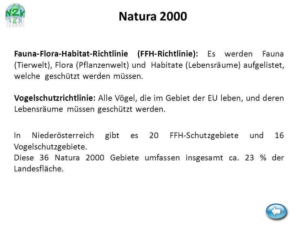 Fauna-Flora-Habitat-Richtlinie (FFH-Richtlinie): Es werden Fauna (Tierwelt), Flora (Pflanzenwelt) und Habitate (Lebensräume) aufgelistet, welche gesch
