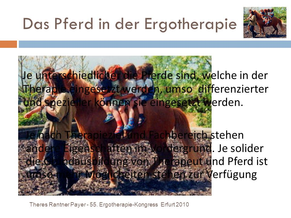 Das Pferd in der Ergotherapie Theres Rantner Payer - 55. Ergotherapie-Kongress Erfurt 2010 Je unterschiedlicher die Pferde sind, welche in der Therapi