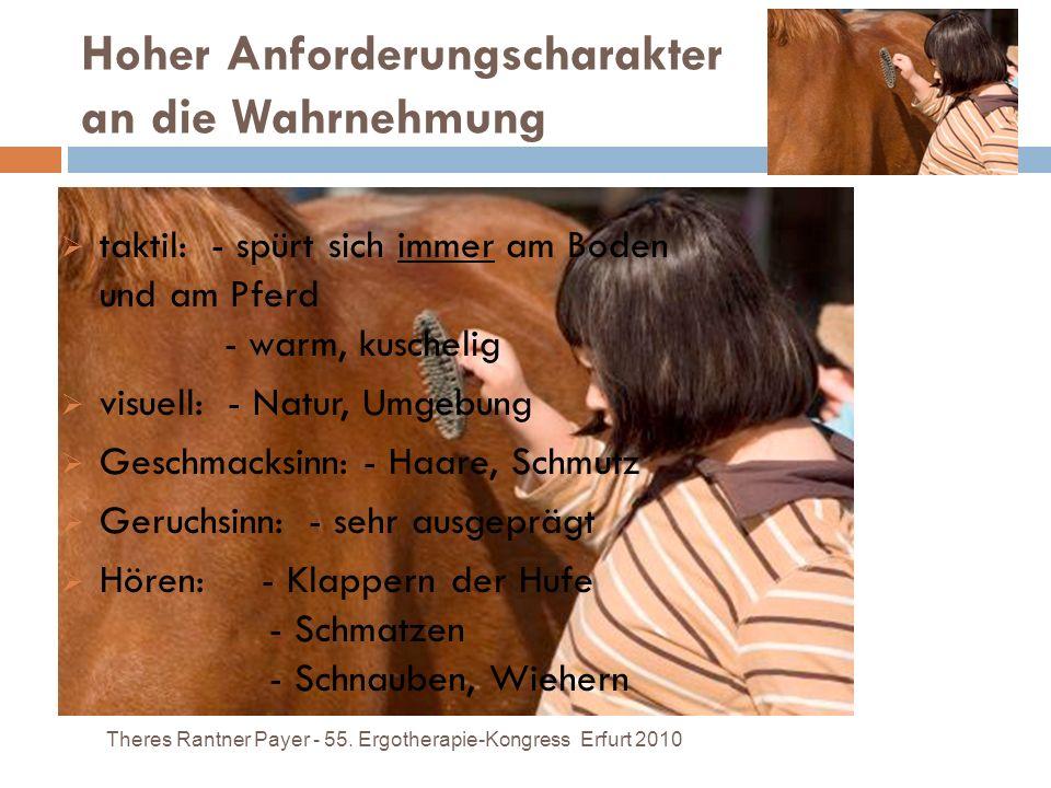 Hoher Anforderungscharakter an die Wahrnehmung Theres Rantner Payer - 55. Ergotherapie-Kongress Erfurt 2010 taktil: - spürt sich immer am Boden und am