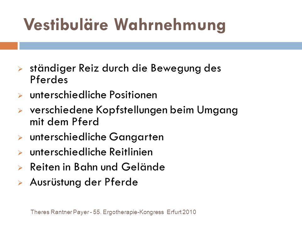 Vestibuläre Wahrnehmung Theres Rantner Payer - 55. Ergotherapie-Kongress Erfurt 2010 ständiger Reiz durch die Bewegung des Pferdes unterschiedliche Po