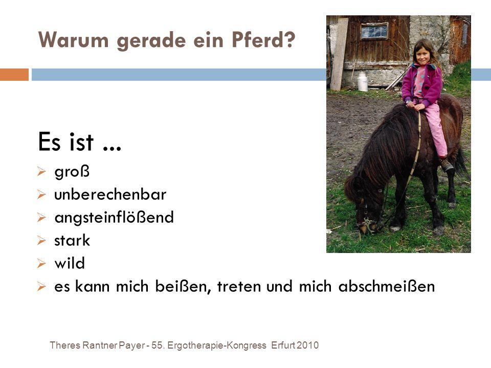 Warum gerade ein Pferd? Theres Rantner Payer - 55. Ergotherapie-Kongress Erfurt 2010 Es ist... groß unberechenbar angsteinflößend stark wild es kann m
