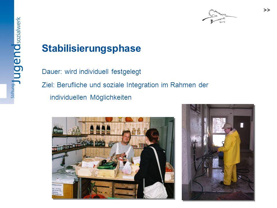 Dauer: wird individuell festgelegt Ziel: Berufliche und soziale Integration im Rahmen der individuellen Möglichkeiten Stabilisierungsphase >>