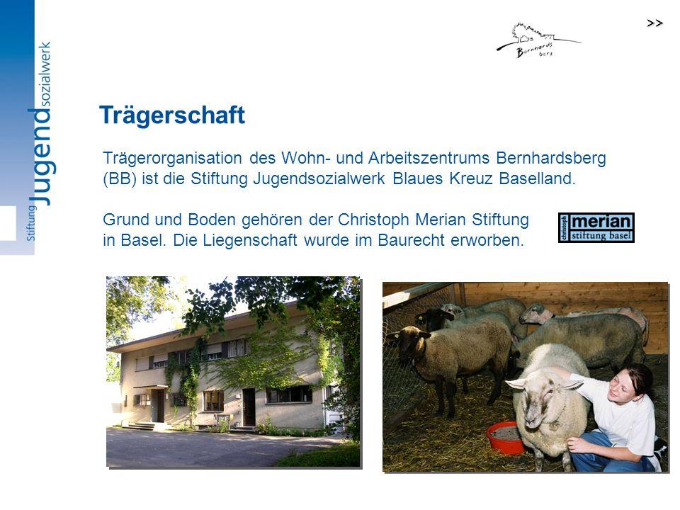 Trägerorganisation des Wohn- und Arbeitszentrums Bernhardsberg (BB) ist die Stiftung Jugendsozialwerk Blaues Kreuz Baselland.