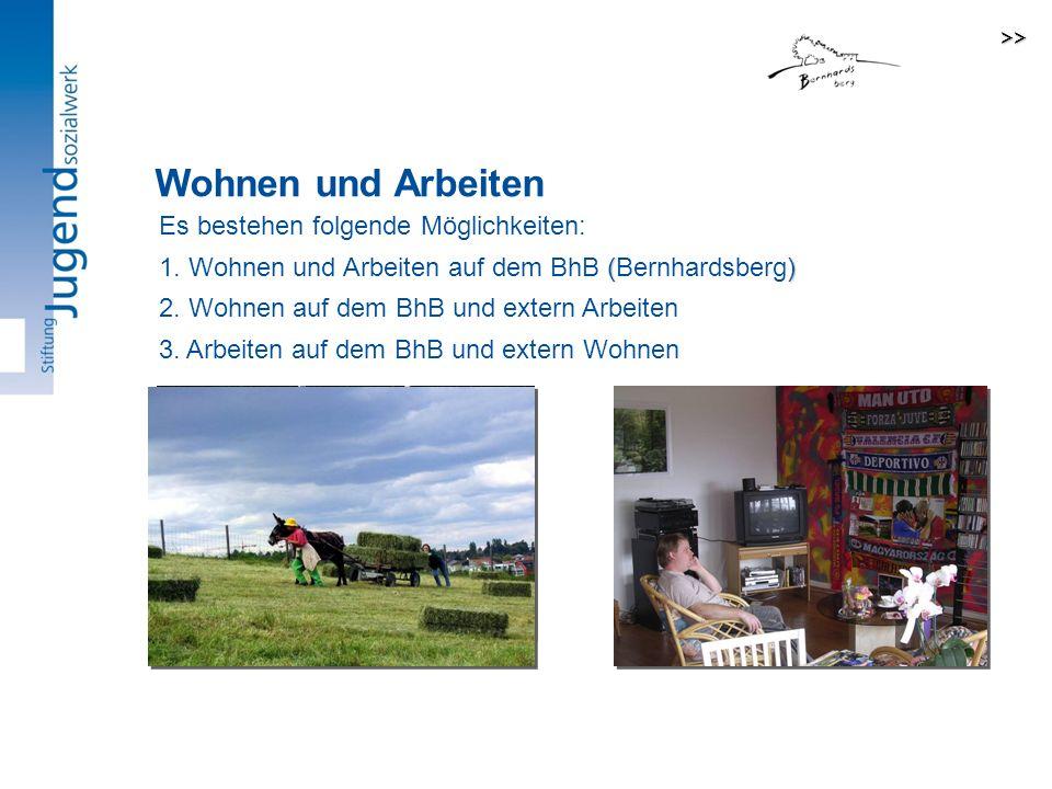 Es bestehen folgende Möglichkeiten: 3.Arbeiten auf dem BhB und extern Wohnen 2.