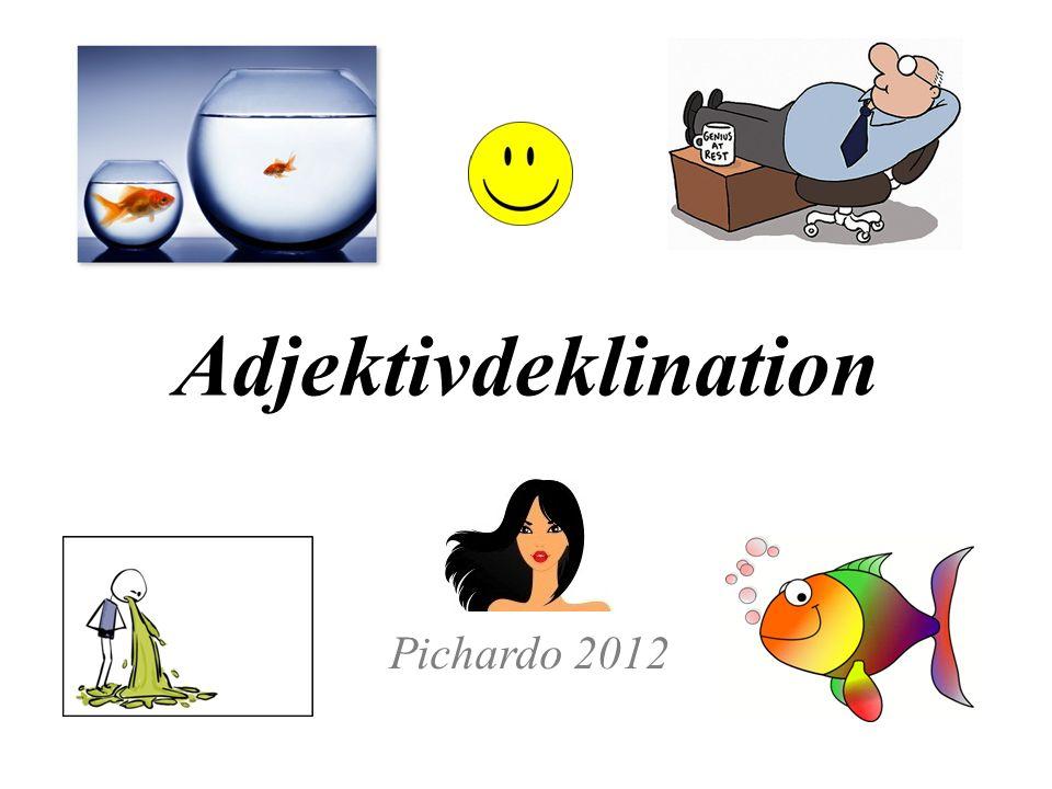 Adjektivdeklination Pichardo 2012