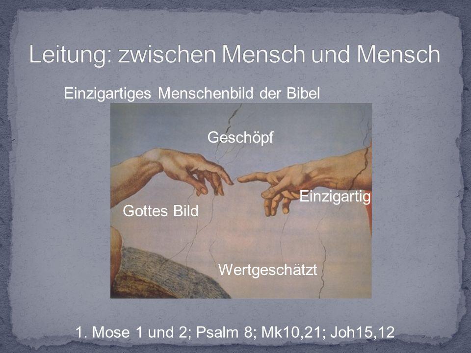 Einzigartiges Menschenbild der Bibel Geschöpf Einzigartig Wertgeschätzt Gottes Bild 1.