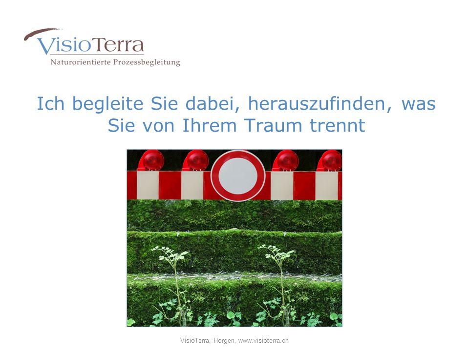 Ich begleite Sie dabei, herauszufinden, was Sie von Ihrem Traum trennt VisioTerra, Horgen, www.visioterra.ch