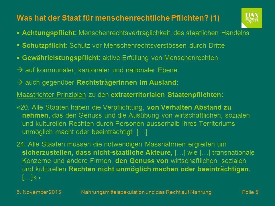 5. November 2013Nahrungsmittelspekulation und das Recht auf Nahrung Folie 5 Was hat der Staat für menschenrechtliche Pflichten? (1) Achtungspflicht: M