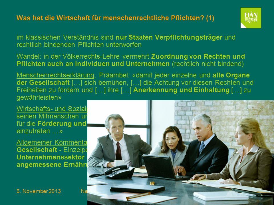 5. November 2013Nahrungsmittelspekulation und das Recht auf Nahrung Folie 7 Was hat die Wirtschaft für menschenrechtliche Pflichten? (1) im klassische
