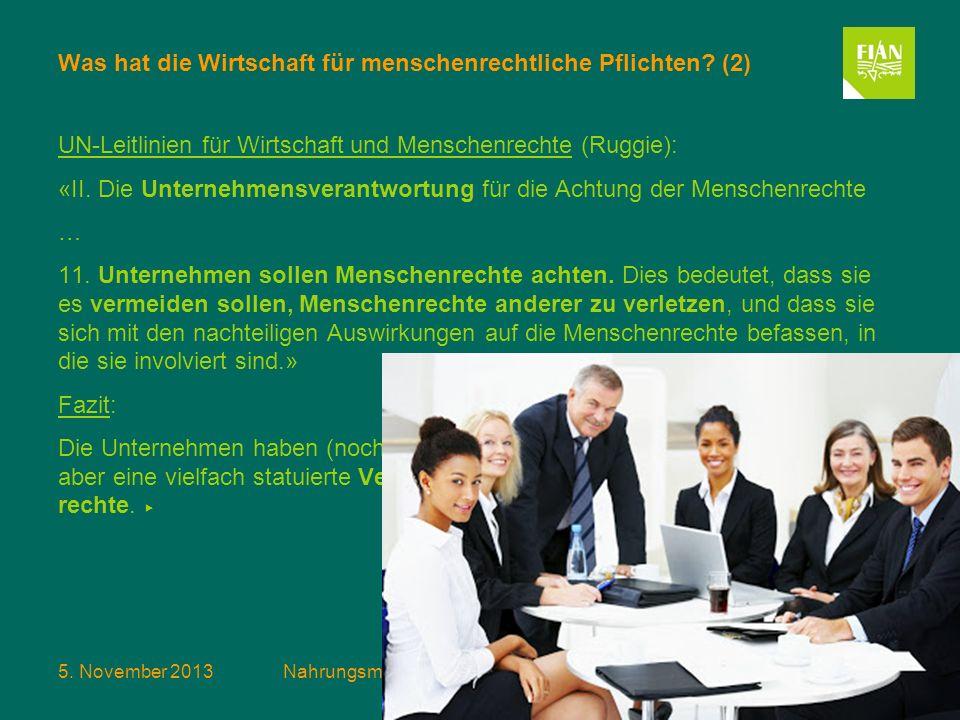 5. November 2013Nahrungsmittelspekulation und das Recht auf Nahrung Folie 8 Was hat die Wirtschaft für menschenrechtliche Pflichten? (2) UN-Leitlinien