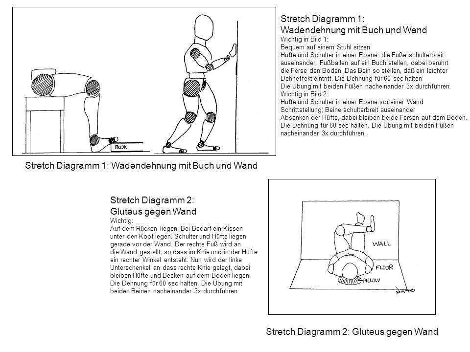 Stretch Diagramm 1: Wadendehnung mit Buch und Wand Wichtig in Bild 1: Bequem auf einem Stuhl sitzen Hüfte und Schulter in einer Ebene, die Füße schult