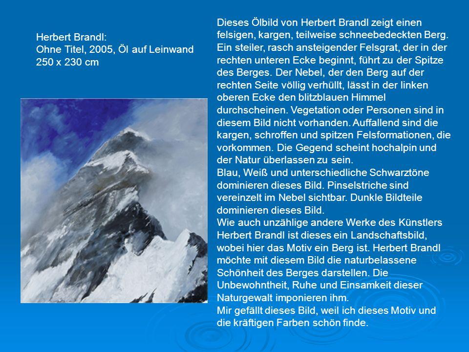 Herbert Brandl: Ohne Titel, 2005, Öl auf Leinwand 250 x 230 cm Dieses Ölbild von Herbert Brandl zeigt einen felsigen, kargen, teilweise schneebedeckten Berg.