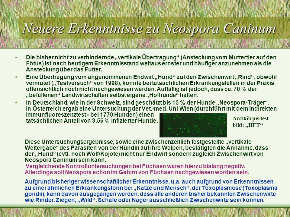 Neuere Erkenntnisse zu Neospora Caninum Die bisher nicht zu verhindernde vertikale Übertragung (Ansteckung vom Muttertier auf den Fötus) ist nach heut