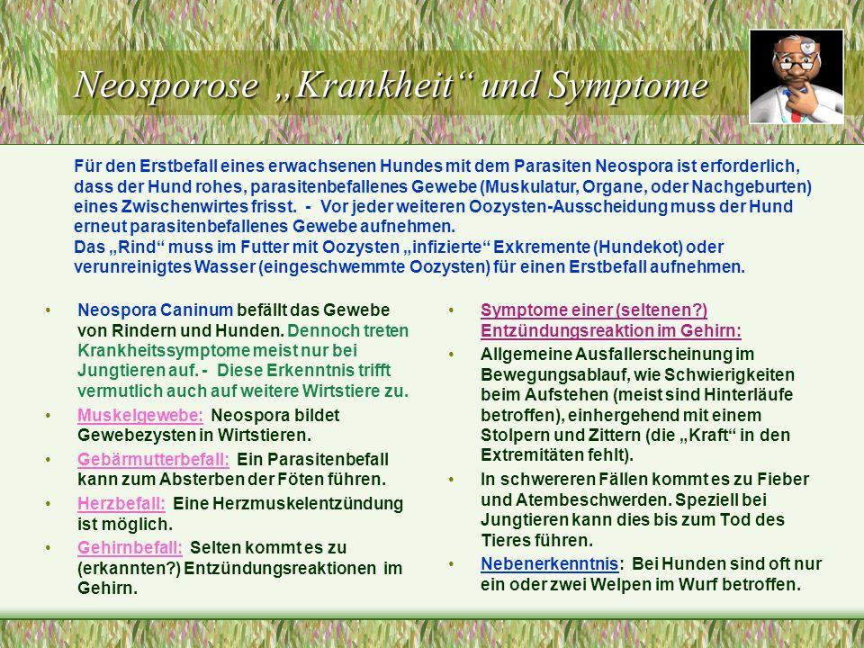 Neosporose Krankheit und Symptome Neospora Caninum befällt das Gewebe von Rindern und Hunden. Dennoch treten Krankheitssymptome meist nur bei Jungtier