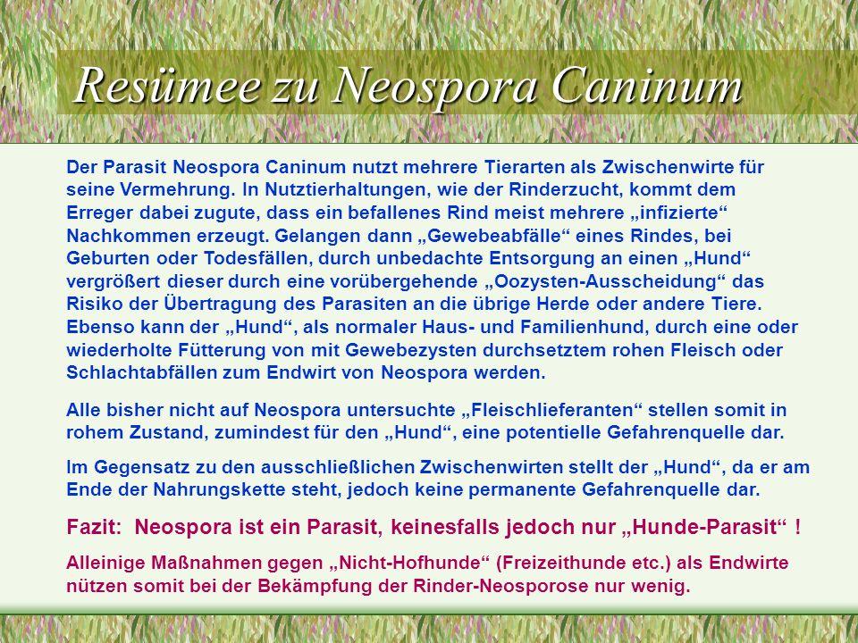 Resümee zu Neospora Caninum Der Parasit Neospora Caninum nutzt mehrere Tierarten als Zwischenwirte für seine Vermehrung. In Nutztierhaltungen, wie der