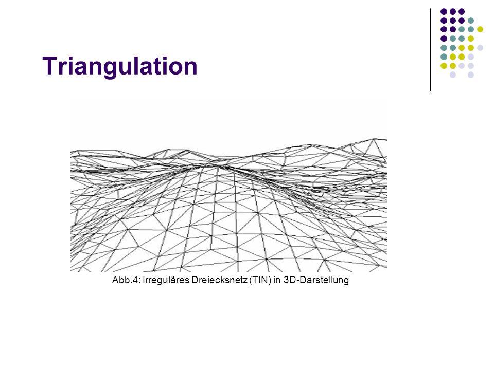 Triangulation Abb.4: Irreguläres Dreiecksnetz (TIN) in 3D-Darstellung