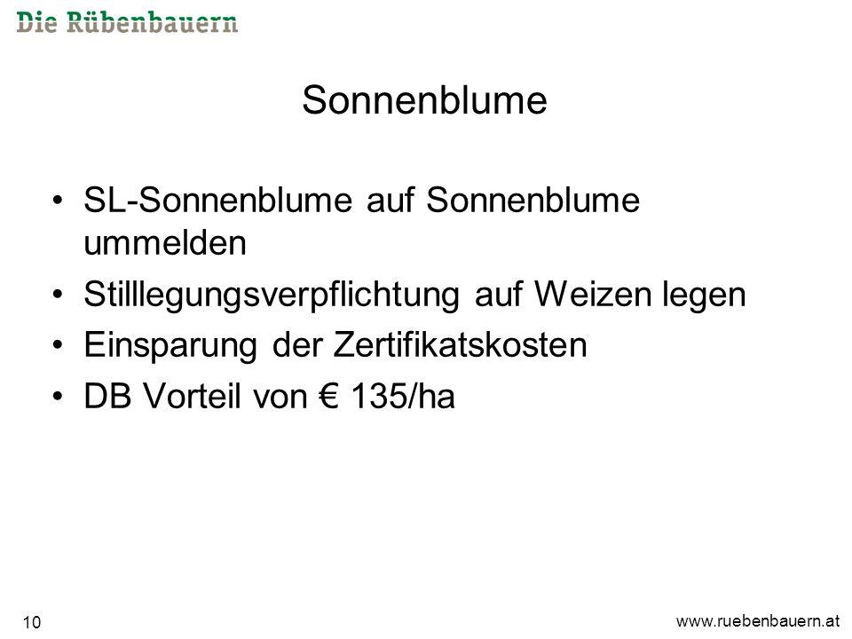 www.ruebenbauern.at 10 Sonnenblume SL-Sonnenblume auf Sonnenblume ummelden Stilllegungsverpflichtung auf Weizen legen Einsparung der Zertifikatskosten DB Vorteil von 135/ha