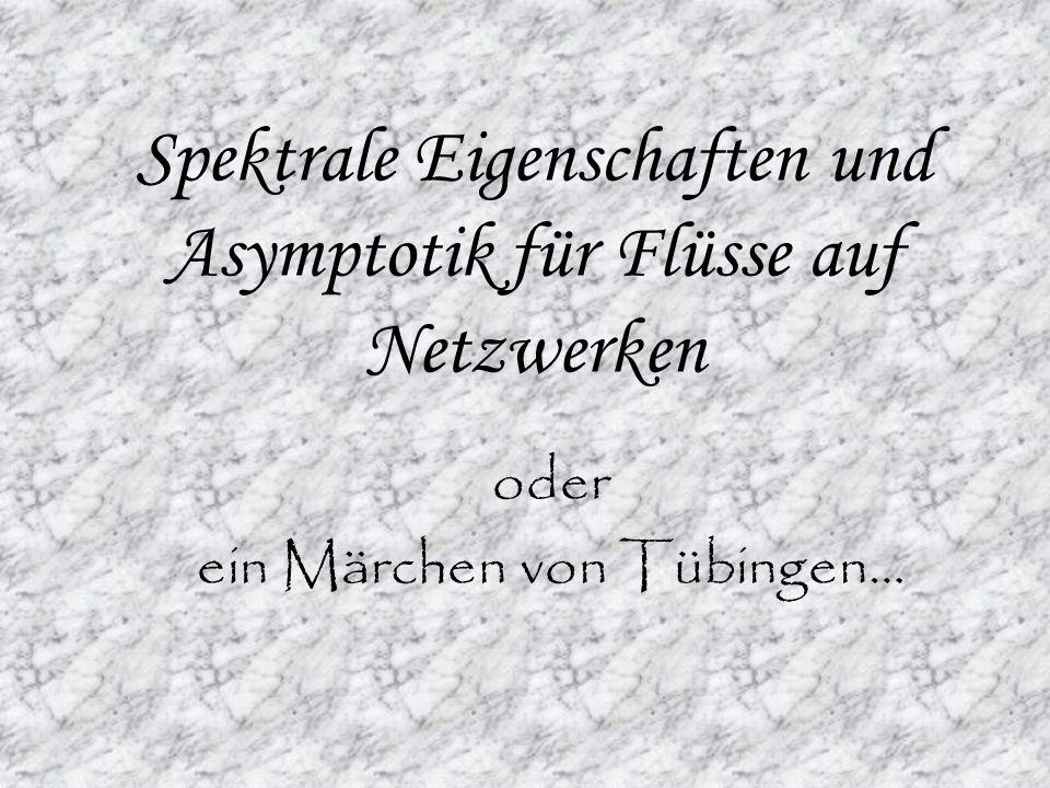 Spektrale Eigenschaften und Asymptotik für Flüsse auf Netzwerken oder ein Märchen von Tübingen…