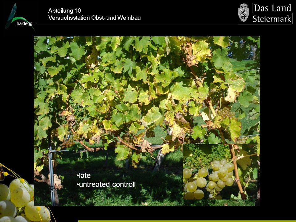haidegg Abteilung 10 Versuchsstation Obst- und Weinbau late untreated controll