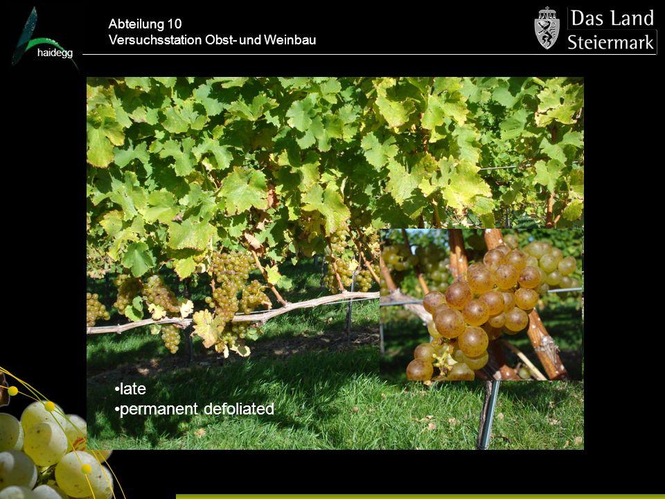 haidegg Abteilung 10 Versuchsstation Obst- und Weinbau late permanent defoliated