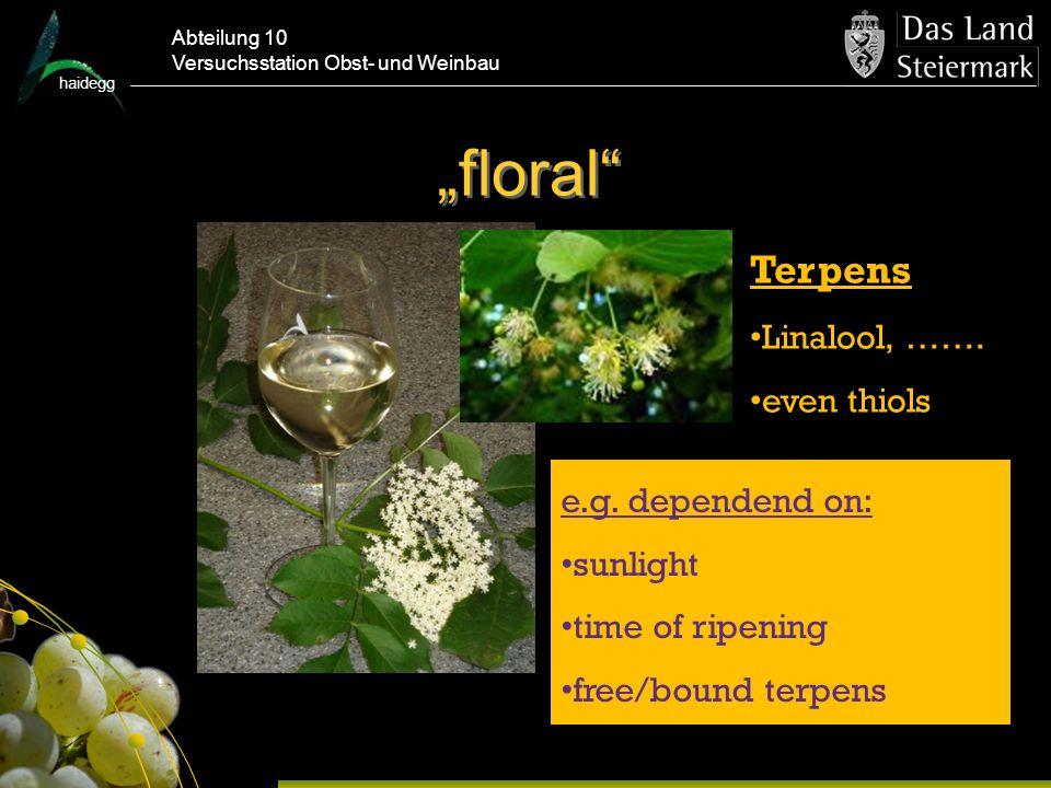 haidegg Abteilung 10 Versuchsstation Obst- und Weinbau floral e.g.