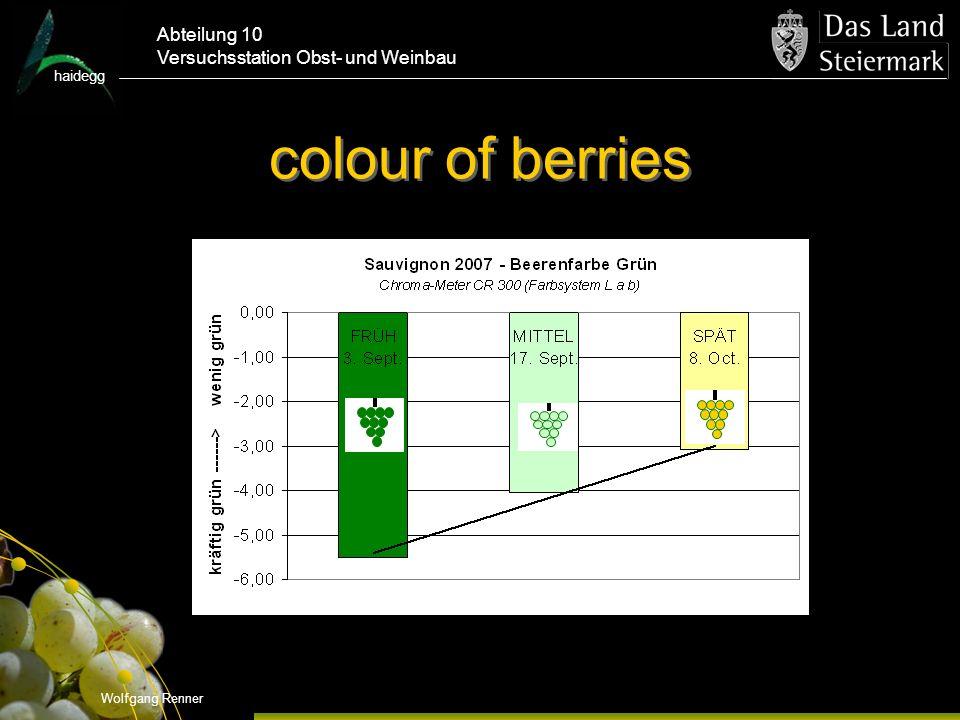 haidegg Abteilung 10 Versuchsstation Obst- und Weinbau colour of berries Wolfgang Renner