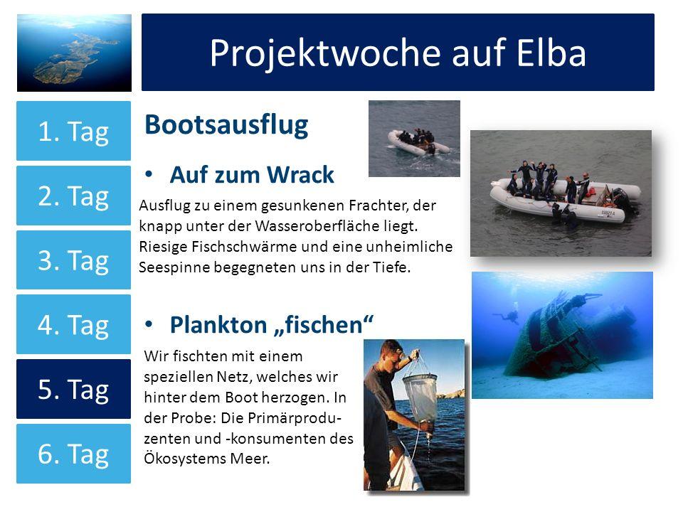 Projektwoche auf Elba Bootsausflug Auf zum Wrack Plankton fischen Projektwoche auf Elba 1. Tag 2. Tag 3. Tag 4. Tag 5. Tag 6. Tag Ausflug zu einem ges