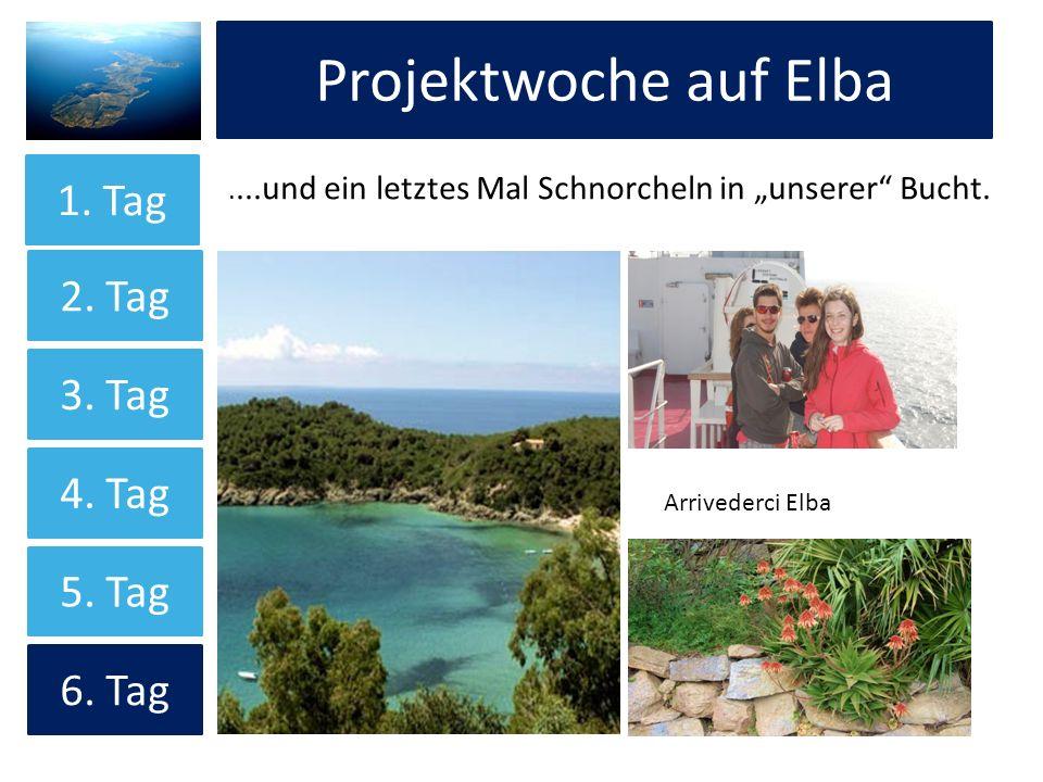 Projektwoche auf Elba....und ein letztes Mal Schnorcheln in unserer Bucht. Arrivederci Elba 1. Tag 2. Tag 4. Tag 3. Tag 5. Tag 6. Tag