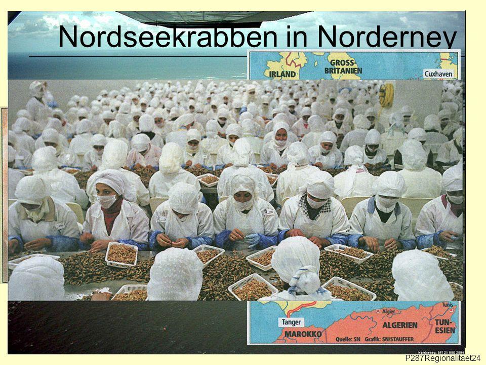 Nordseekrabben in Norderney P287Regionalitaet24