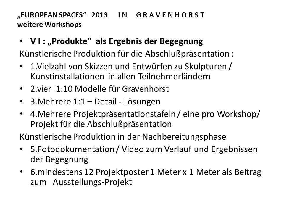 EUROPEAN SPACES 2013 I N G R A V E N H O R S T weitere Workshops V I : Produkte als Ergebnis der Begegnung Künstlerische Produktion für die Abschlußpr