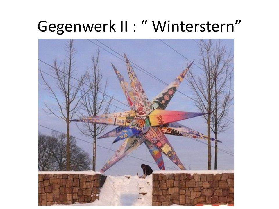 Gegenwerk II : Winterstern