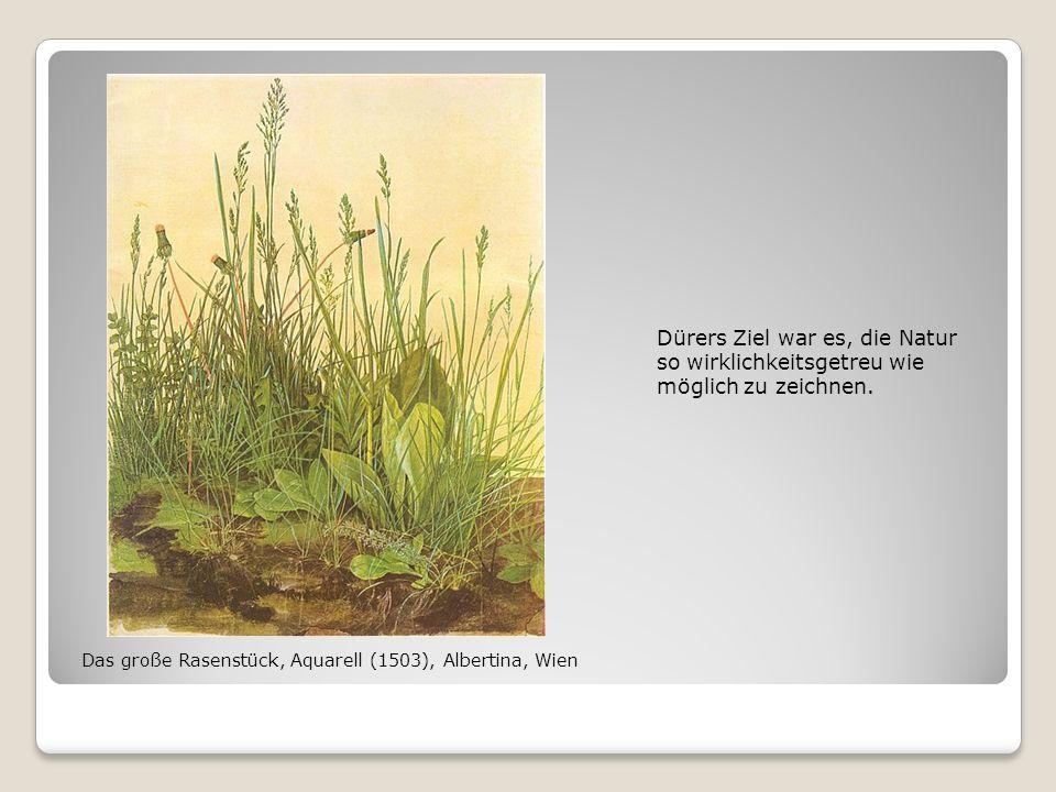 Dürers Ziel war es, die Natur so wirklichkeitsgetreu wie möglich zu zeichnen. Das große Rasenstück, Aquarell (1503), Albertina, Wien