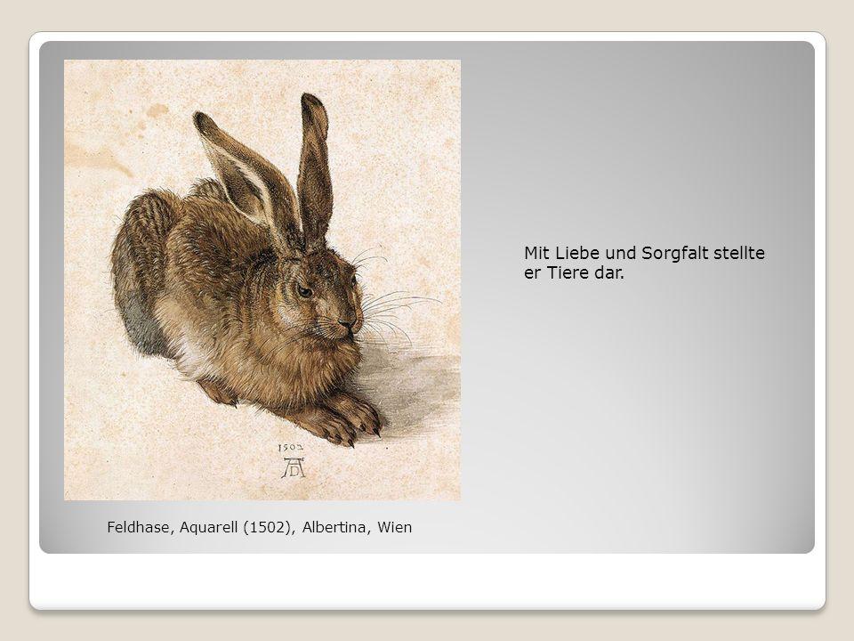 Mit Liebe und Sorgfalt stellte er Tiere dar. Feldhase, Aquarell (1502), Albertina, Wien