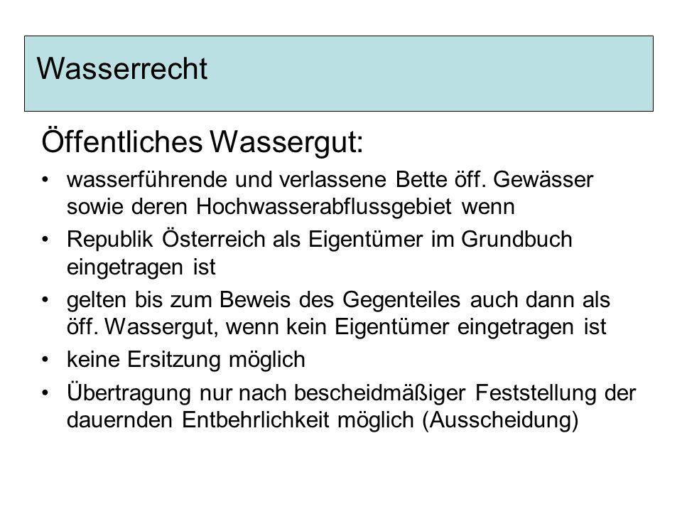 Öffentliches Wassergut: wasserführende und verlassene Bette öff. Gewässer sowie deren Hochwasserabflussgebiet wenn Republik Österreich als Eigentümer