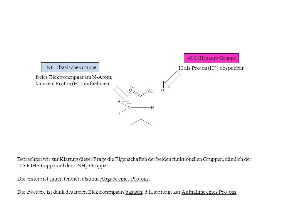 H als Proton (H + ) abspaltbar freies Elektronenpaar am N-Atom; kann ein Proton (H + ) aufnehmen –CO 2 H: saure Gruppe –NH 2 : basische Gruppe Betrach
