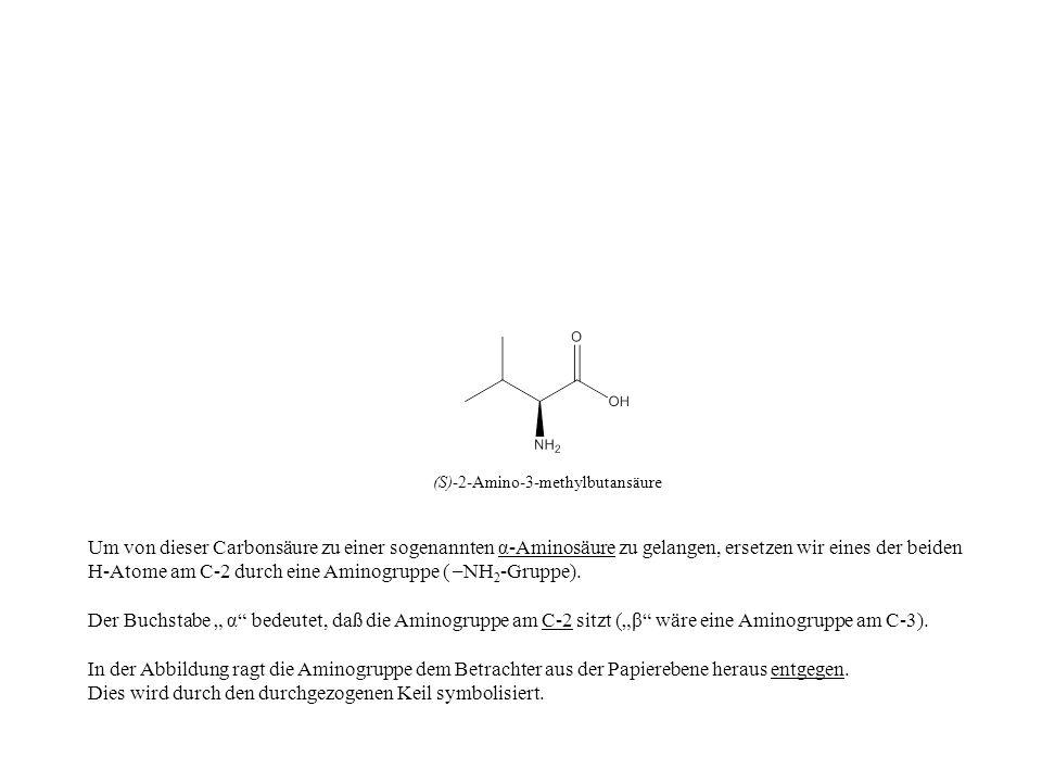 Um von dieser Carbonsäure zu einer sogenannten α-Aminosäure zu gelangen, ersetzen wir eines der beiden H-Atome am C-2 durch eine Aminogruppe ( – NH 2
