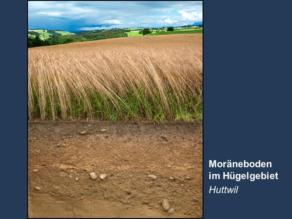 25 Name der Präsentation   Untertitel Autor Moräneboden im Hügelgebiet Huttwil
