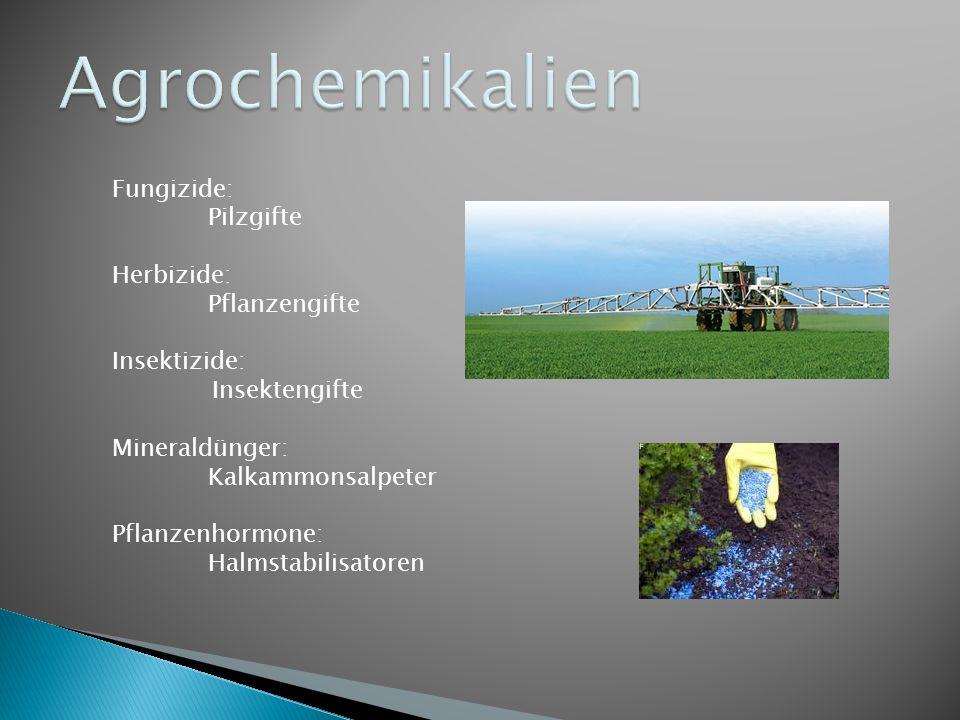 Fungizide: Pilzgifte Herbizide: Pflanzengifte Insektizide: Insektengifte Mineraldünger: Kalkammonsalpeter Pflanzenhormone: Halmstabilisatoren