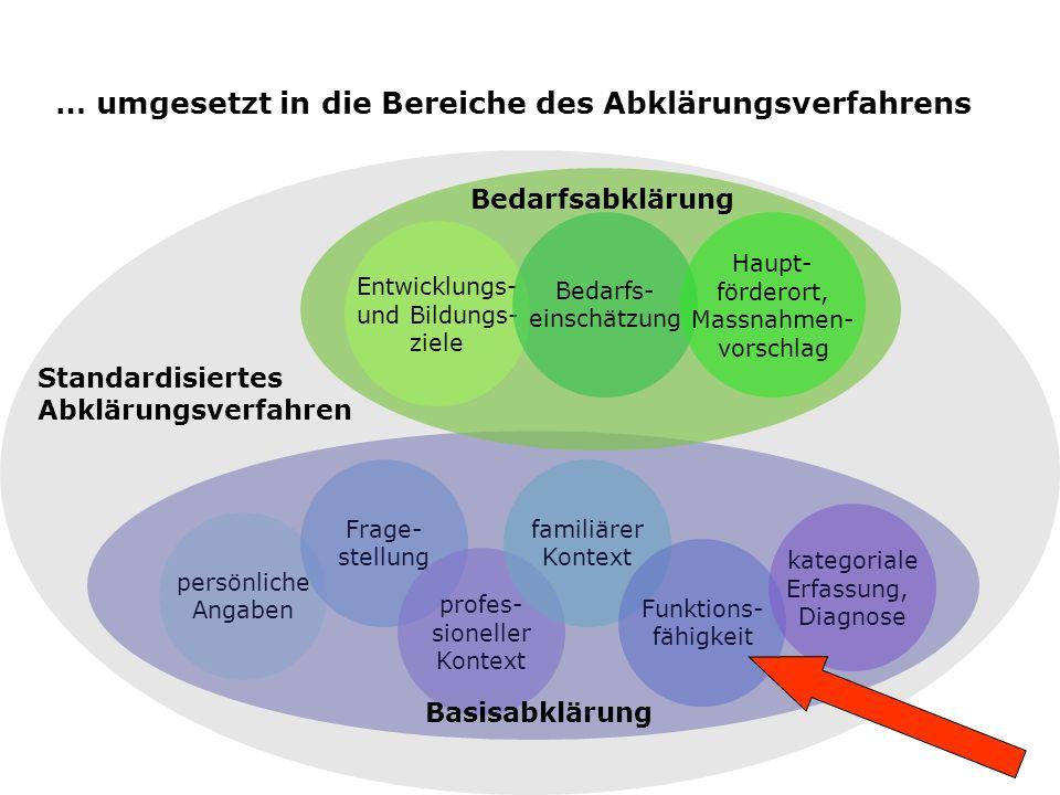 … umgesetzt in die Bereiche des Abklärungsverfahrens persönliche Angaben Frage- stellung profes- sioneller Kontext familiärer Kontext Funktions- fähig