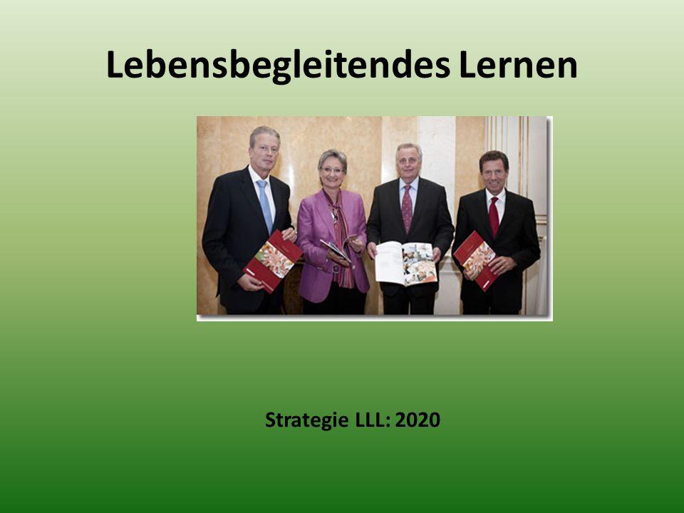 Lebensbegleitendes Lernen Strategie LLL: 2020
