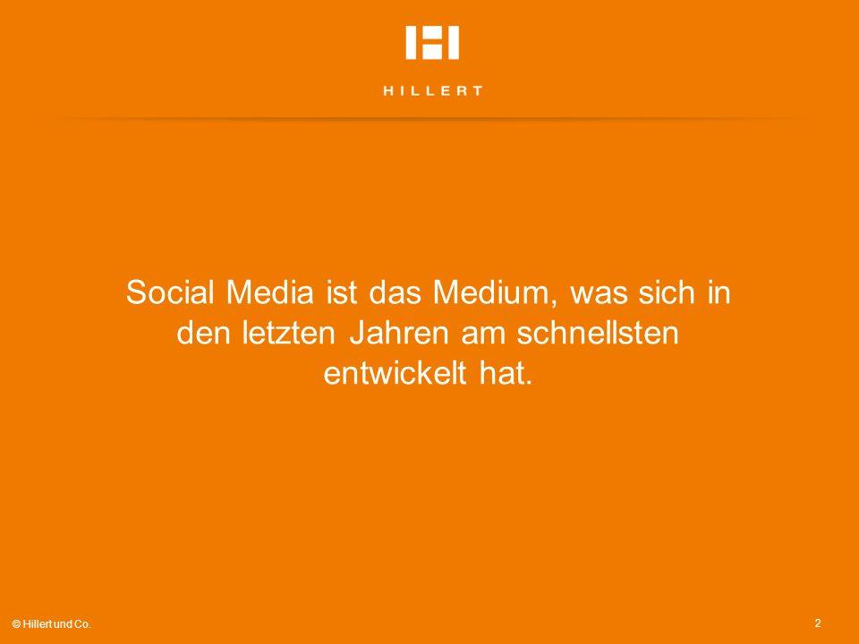 2 © Hillert und Co. Social Media ist das Medium, was sich in den letzten Jahren am schnellsten entwickelt hat.