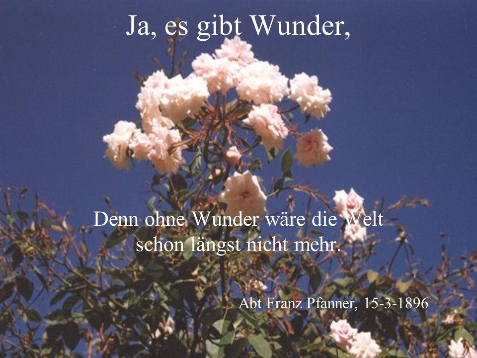Ja, es gibt Wunder, Denn ohne Wunder wäre die Welt schon längst nicht mehr.