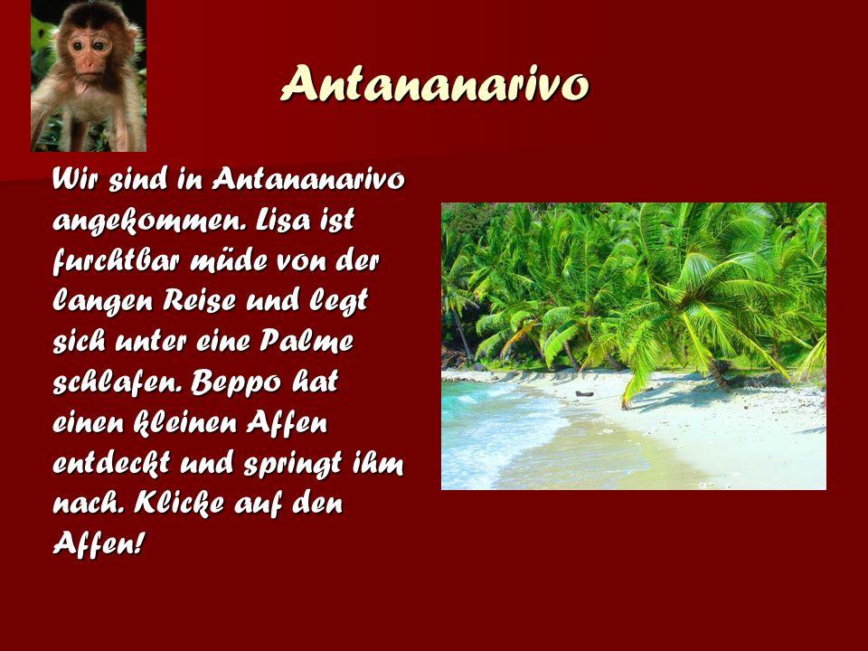 Antananarivo Wir sind in Antananarivo angekommen.